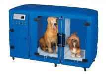 msa_roto_marinho_com_cachorros_rodinhas