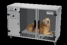 MSA_Inox_com_cachorro